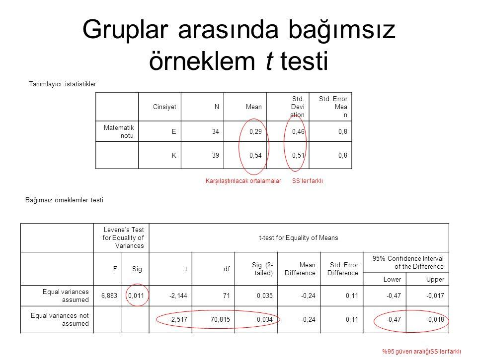 Gruplar arasında bağımsız örneklem t testi