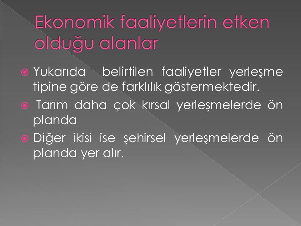Ekonomik faaliyetlerin etken olduğu alanlar