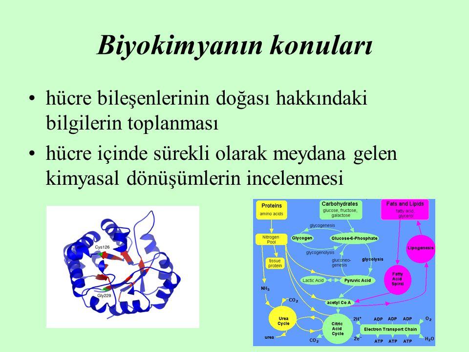 Biyokimyanın konuları