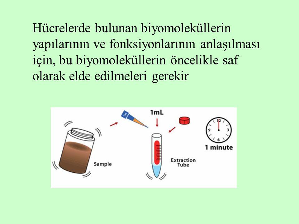 Hücrelerde bulunan biyomoleküllerin yapılarının ve fonksiyonlarının anlaşılması için, bu biyomoleküllerin öncelikle saf olarak elde edilmeleri gerekir