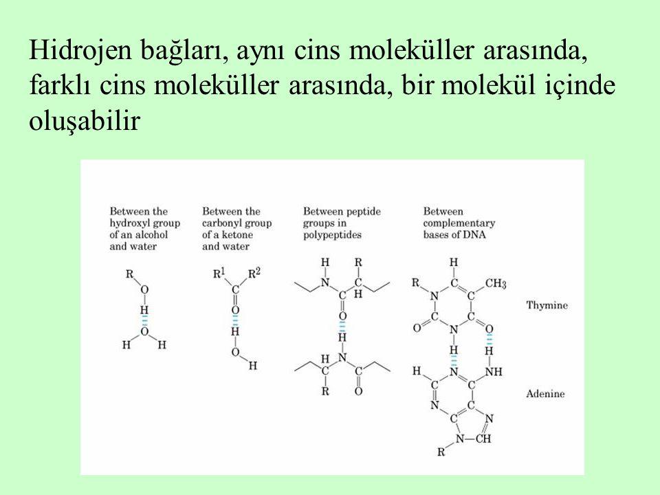 Hidrojen bağları, aynı cins moleküller arasında, farklı cins moleküller arasında, bir molekül içinde oluşabilir