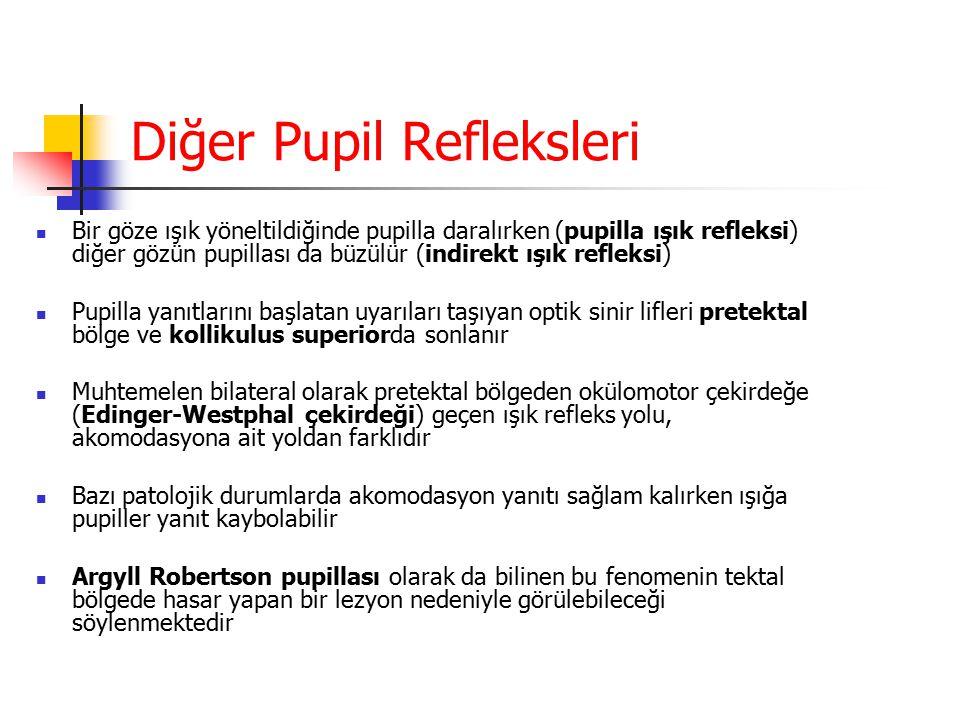 Diğer Pupil Refleksleri