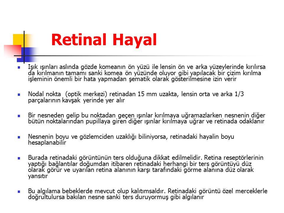 Retinal Hayal