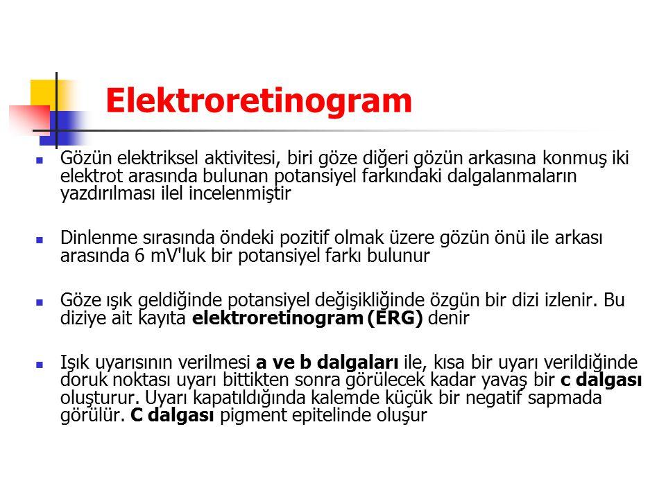 Elektroretinogram