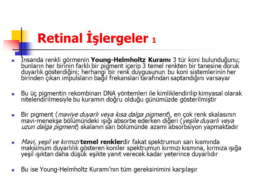 Retinal İşlergeler 1