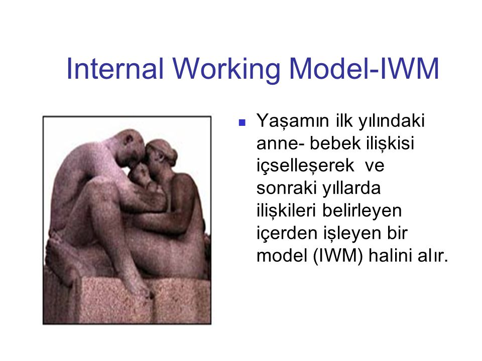 Internal Working Model-IWM