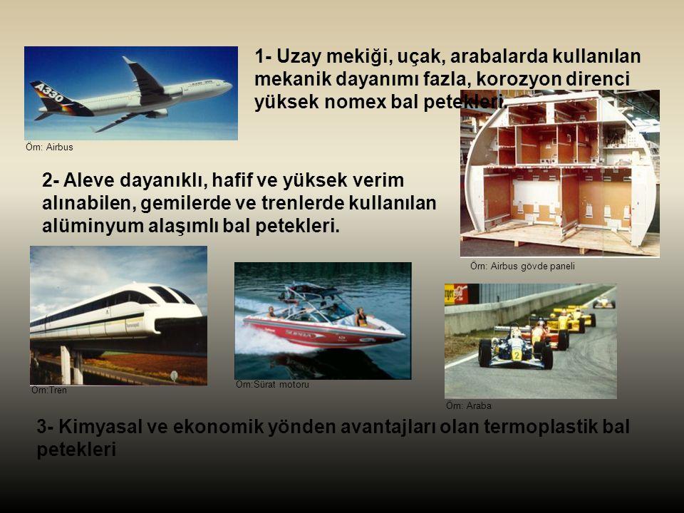 1- Uzay mekiği, uçak, arabalarda kullanılan mekanik dayanımı fazla, korozyon direnci yüksek nomex bal petekleri.