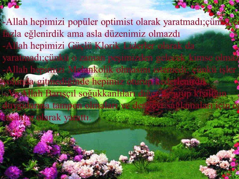 -Allah hepimizi popüler optimist olarak yaratmadı;çünkü çok fazla eğlenirdik ama asla düzenimiz olmazdı