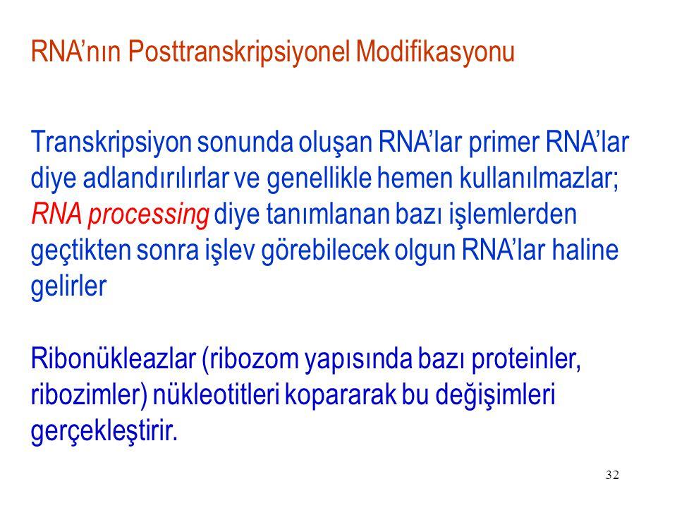 RNA'nın Posttranskripsiyonel Modifikasyonu