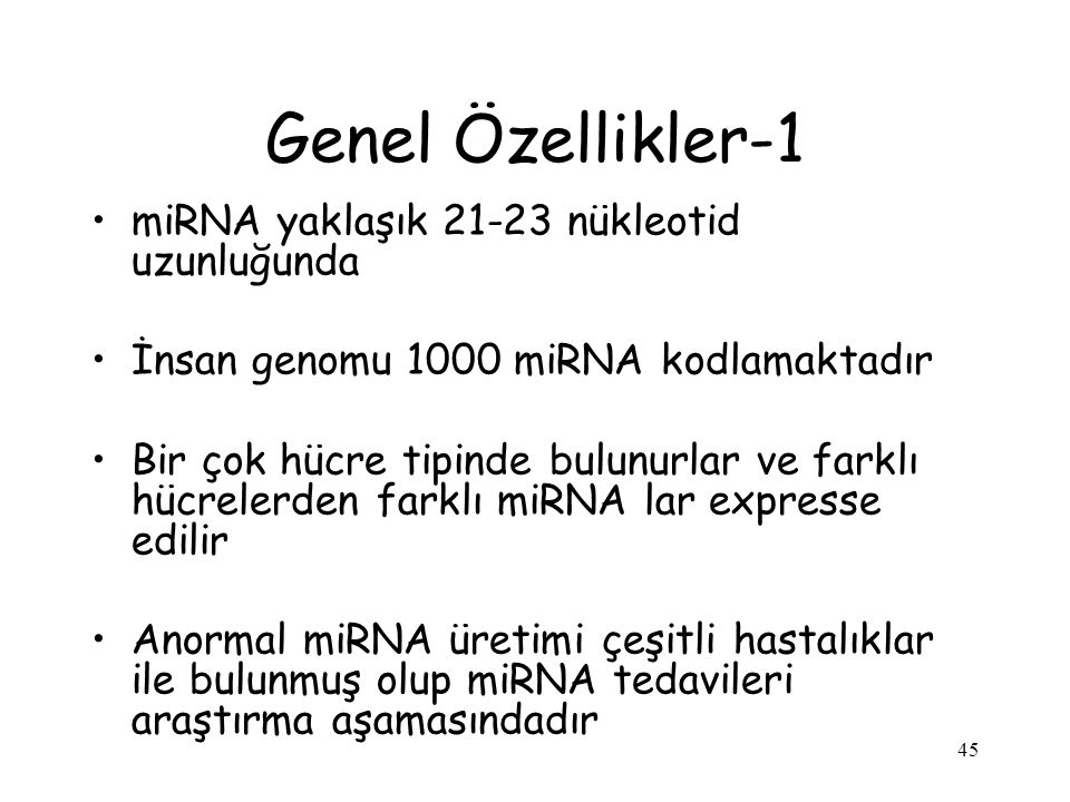 Genel Özellikler-1 miRNA yaklaşık 21-23 nükleotid uzunluğunda