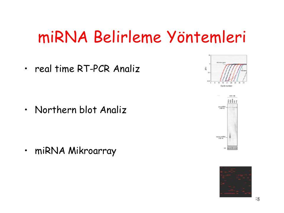 miRNA Belirleme Yöntemleri