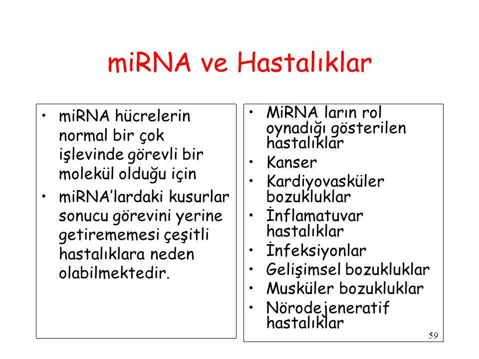 miRNA ve Hastalıklar miRNA hücrelerin normal bir çok işlevinde görevli bir molekül olduğu için.