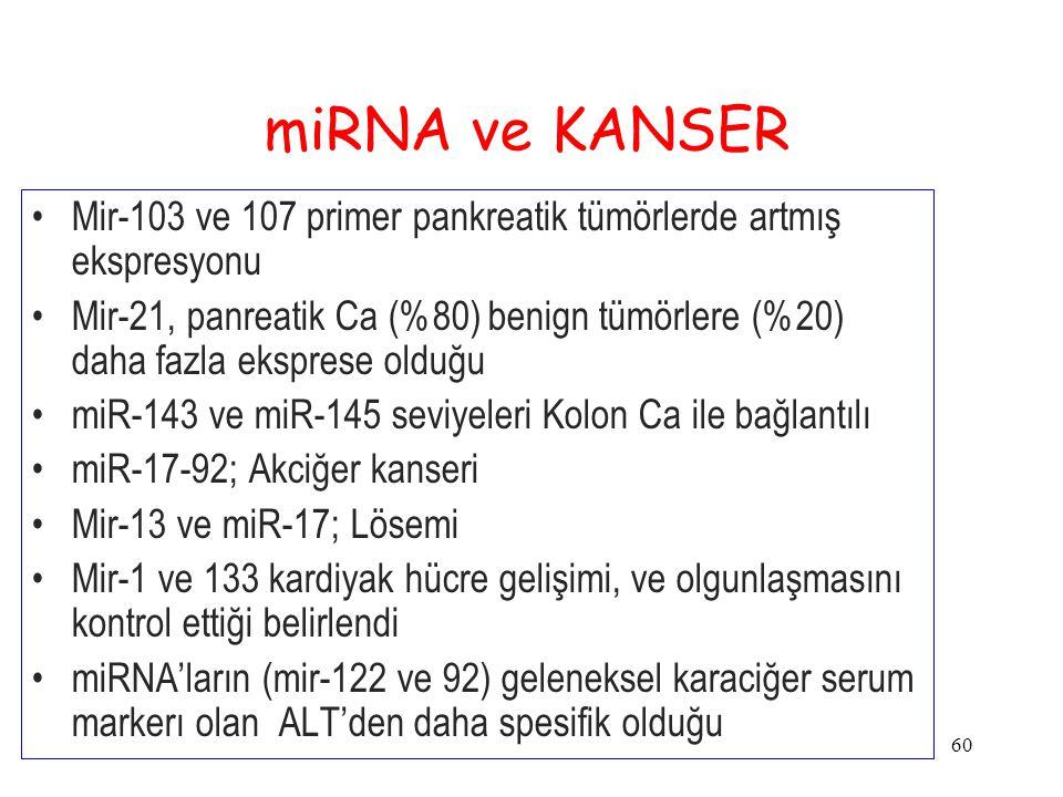 miRNA ve KANSER Mir-103 ve 107 primer pankreatik tümörlerde artmış ekspresyonu.