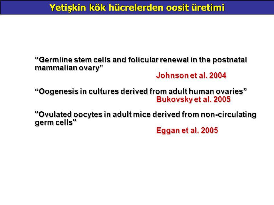 Yetişkin kök hücrelerden oosit üretimi