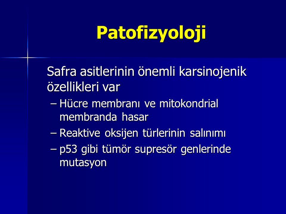 Patofizyoloji Safra asitlerinin önemli karsinojenik özellikleri var