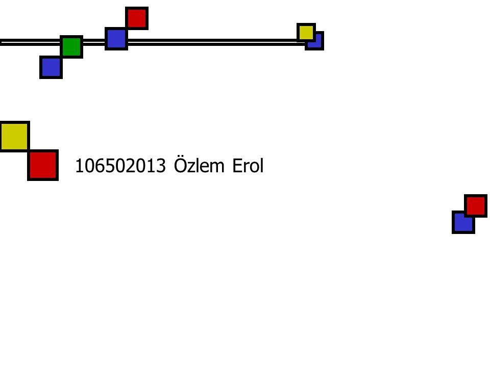 106502013 Özlem Erol