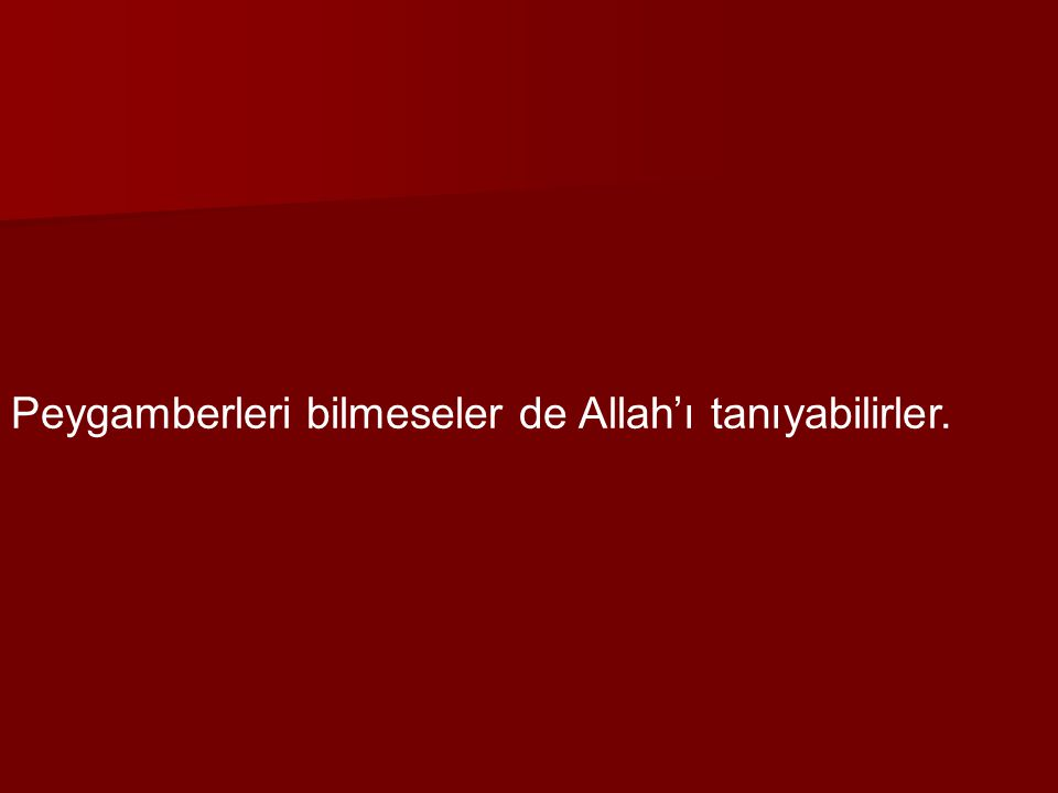 Peygamberleri bilmeseler de Allah'ı tanıyabilirler.