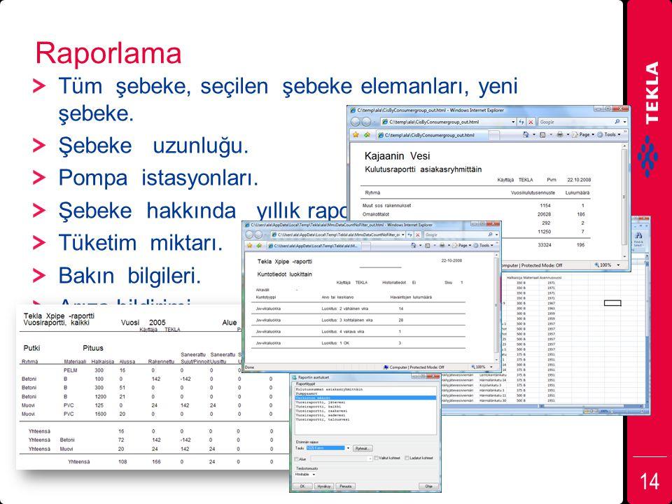 Raporlama Tüm şebeke, seçilen şebeke elemanları, yeni şebeke.