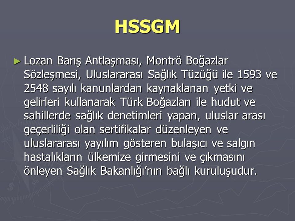HSSGM