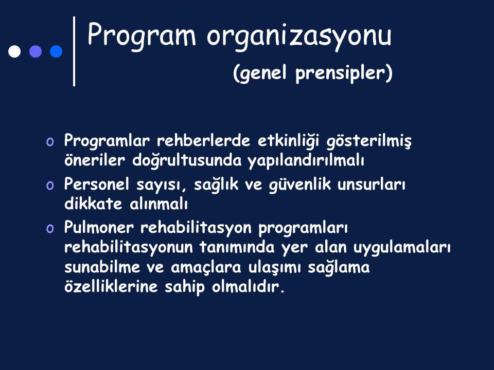Program organizasyonu (genel prensipler)