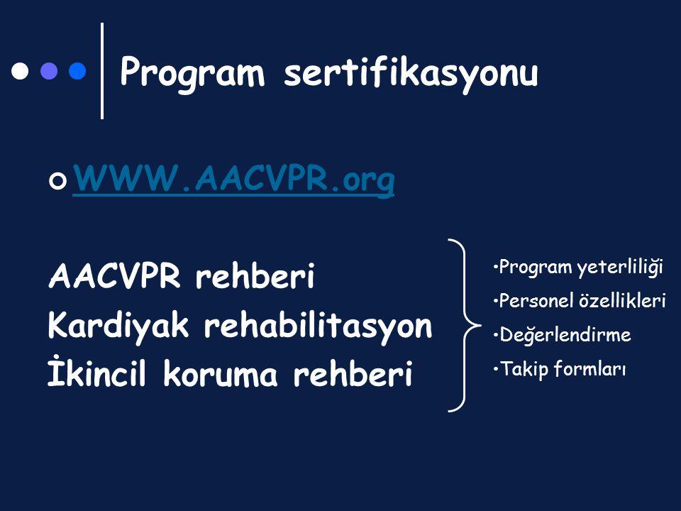 Program sertifikasyonu