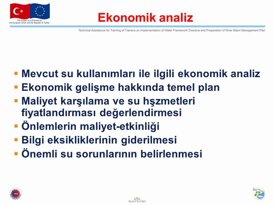 Ekonomik analiz Mevcut su kullanımları ile ilgili ekonomik analiz