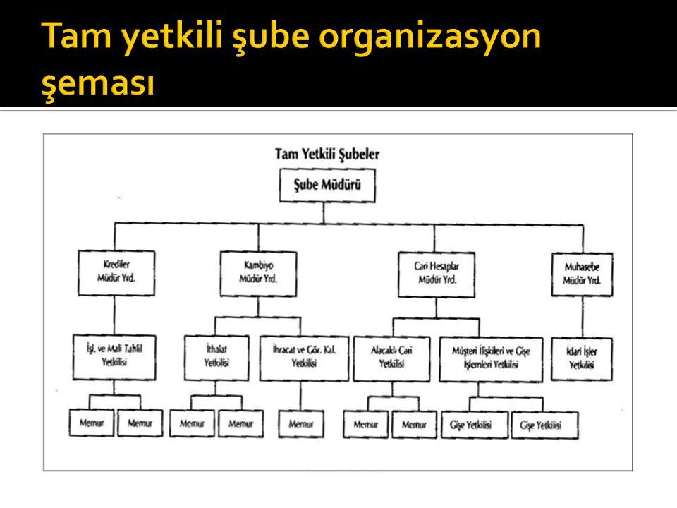 Tam yetkili şube organizasyon şeması