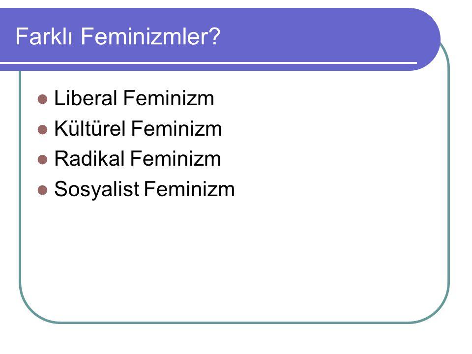 Farklı Feminizmler Liberal Feminizm Kültürel Feminizm