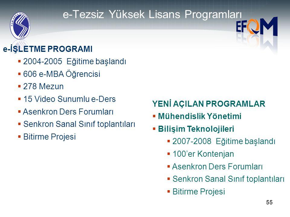 e-Tezsiz Yüksek Lisans Programları