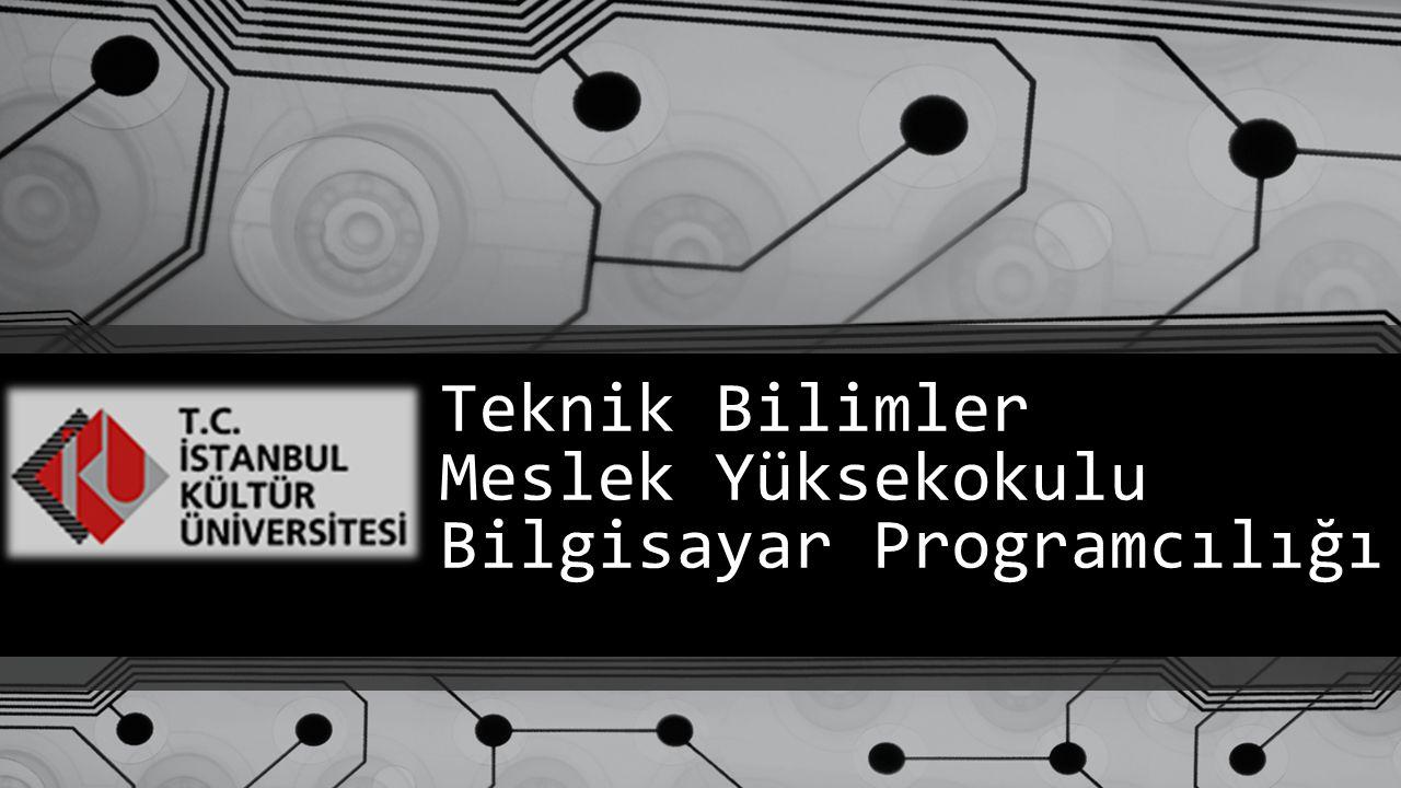 Teknik Bilimler Meslek Yüksekokulu Bilgisayar Programcılığı