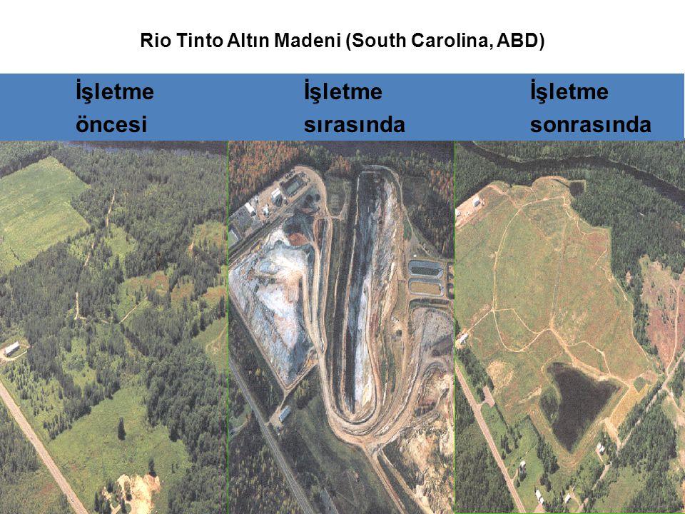 Rio Tinto Altın Madeni (South Carolina, ABD)