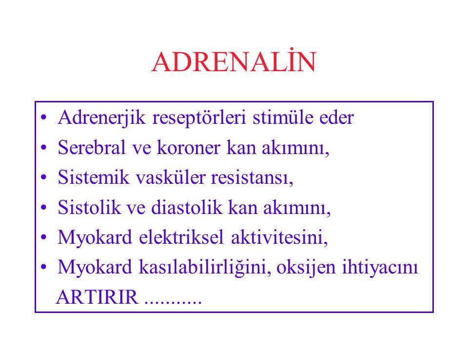 ADRENALİN Adrenerjik reseptörleri stimüle eder