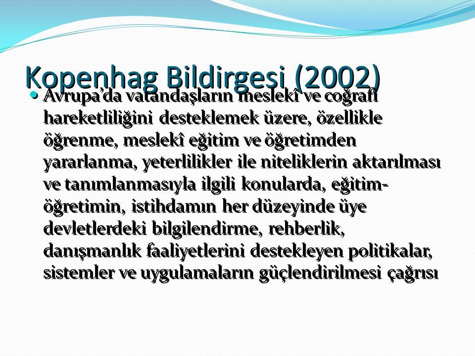 Kopenhag Bildirgesi (2002)