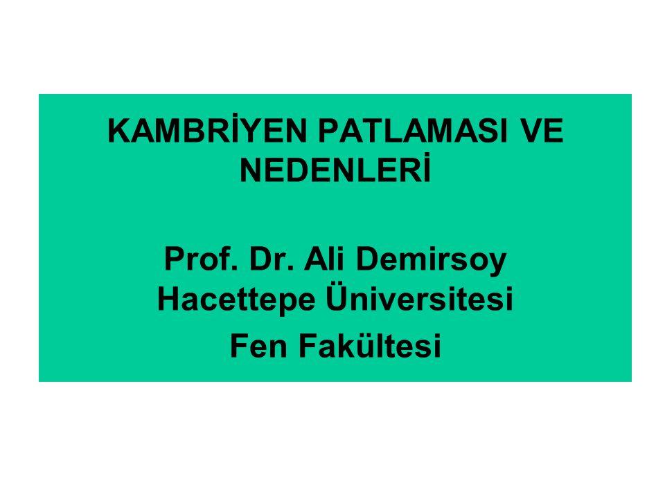 KAMBRİYEN PATLAMASI VE NEDENLERİ Prof. Dr
