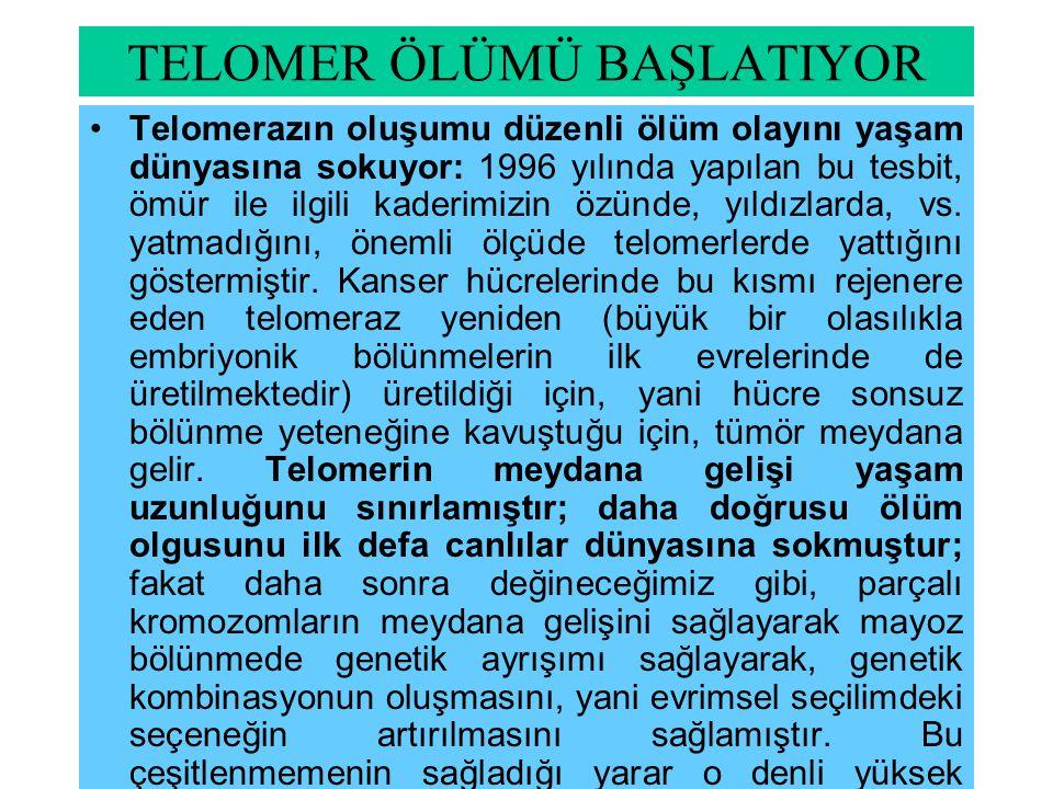 TELOMER ÖLÜMÜ BAŞLATIYOR