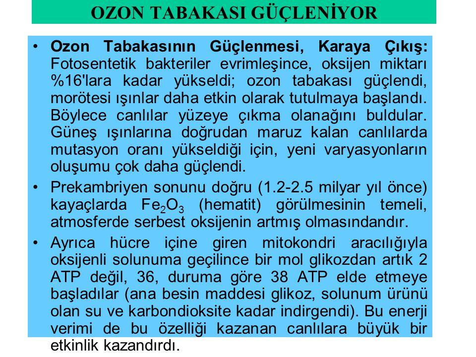 OZON TABAKASI GÜÇLENİYOR