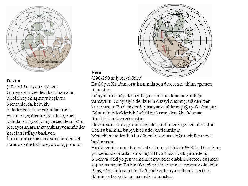 Perm (290-250 milyon yıl önce) Bu Süper Kıta'nın orta kısmında son derece sert iklim egemen olmuştur.