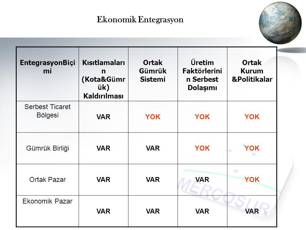 Ekonomik Entegrasyon EntegrasyonBiçimi