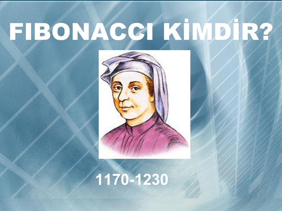 FIBONACCI KİMDİR 1170-1230