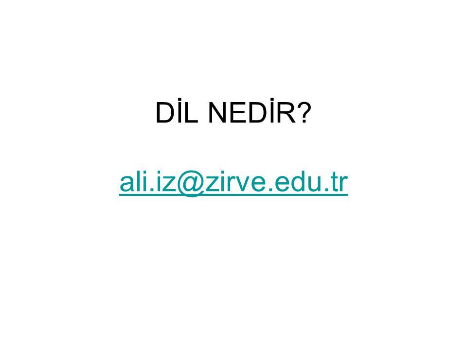 DİL NEDİR ali.iz@zirve.edu.tr