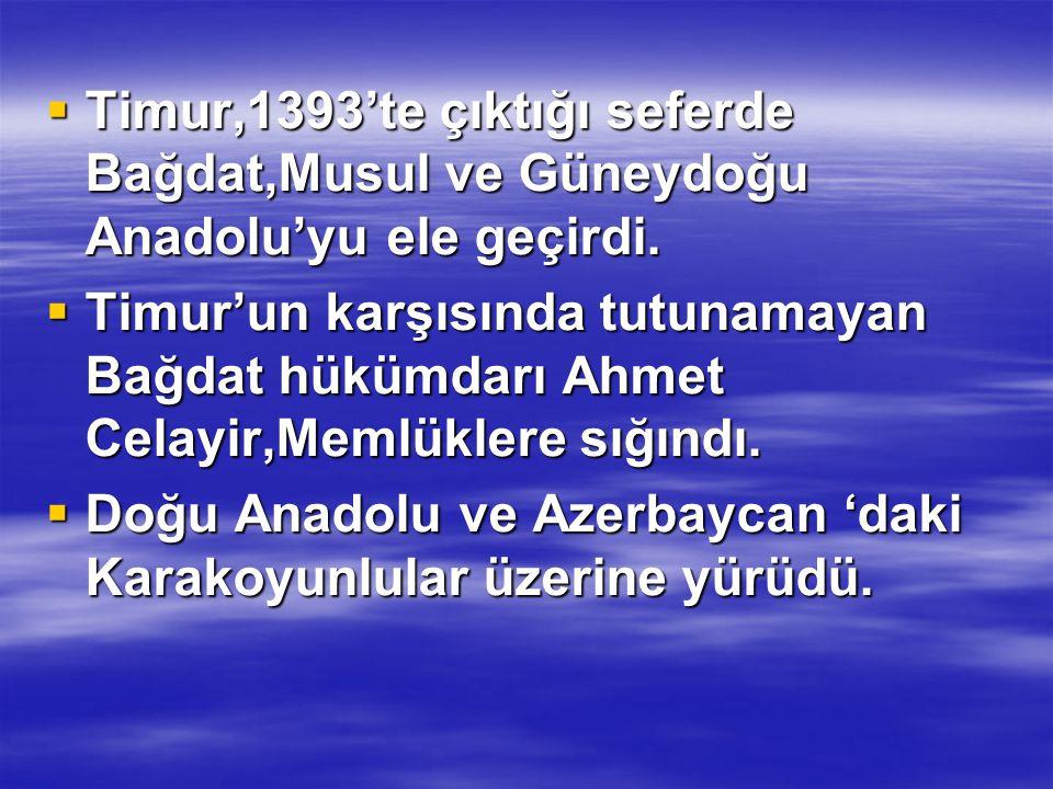 Timur,1393'te çıktığı seferde Bağdat,Musul ve Güneydoğu Anadolu'yu ele geçirdi.