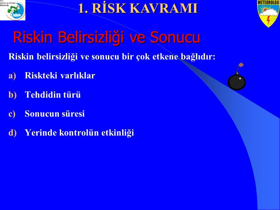 Riskin Belirsizliği ve Sonucu