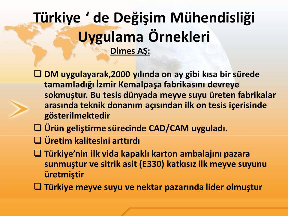 Türkiye ' de Değişim Mühendisliği Uygulama Örnekleri