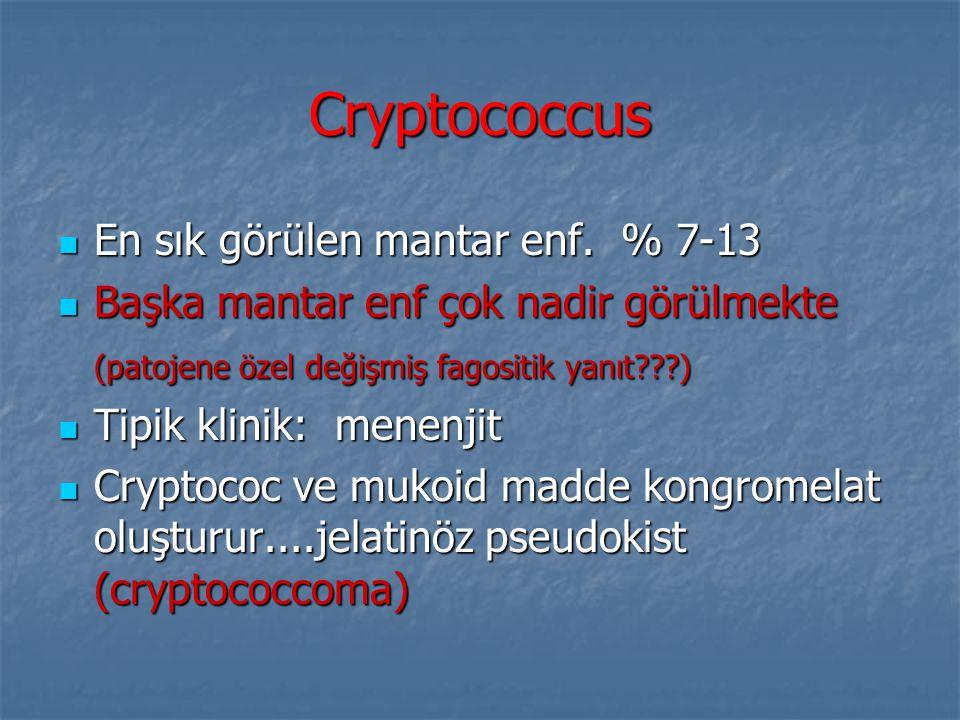 Cryptococcus En sık görülen mantar enf. % 7-13
