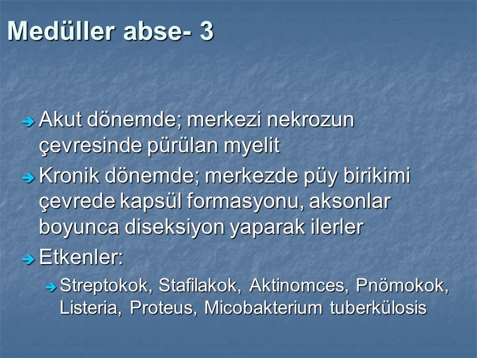 Medüller abse- 3 Akut dönemde; merkezi nekrozun çevresinde pürülan myelit.