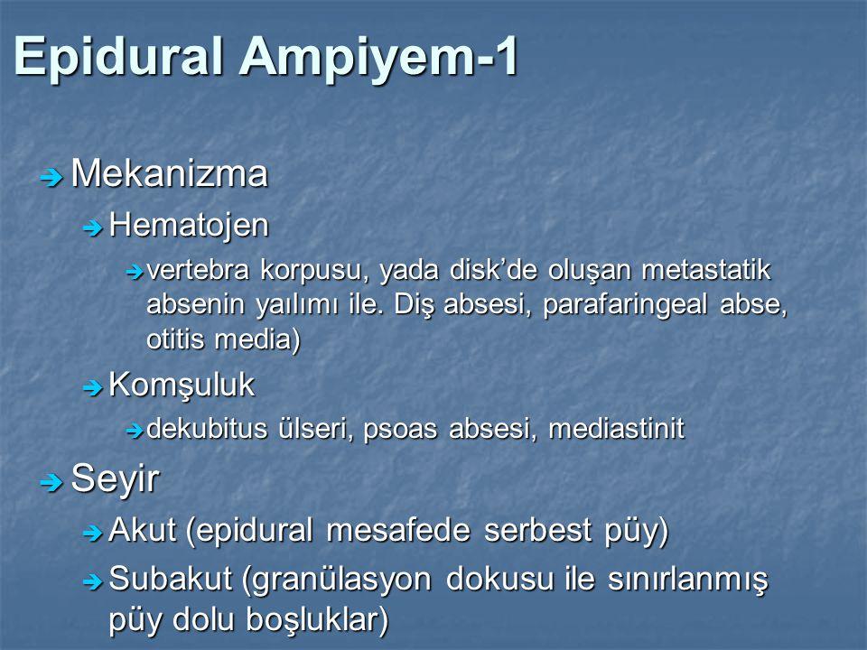 Epidural Ampiyem-1 Mekanizma Seyir Hematojen Komşuluk