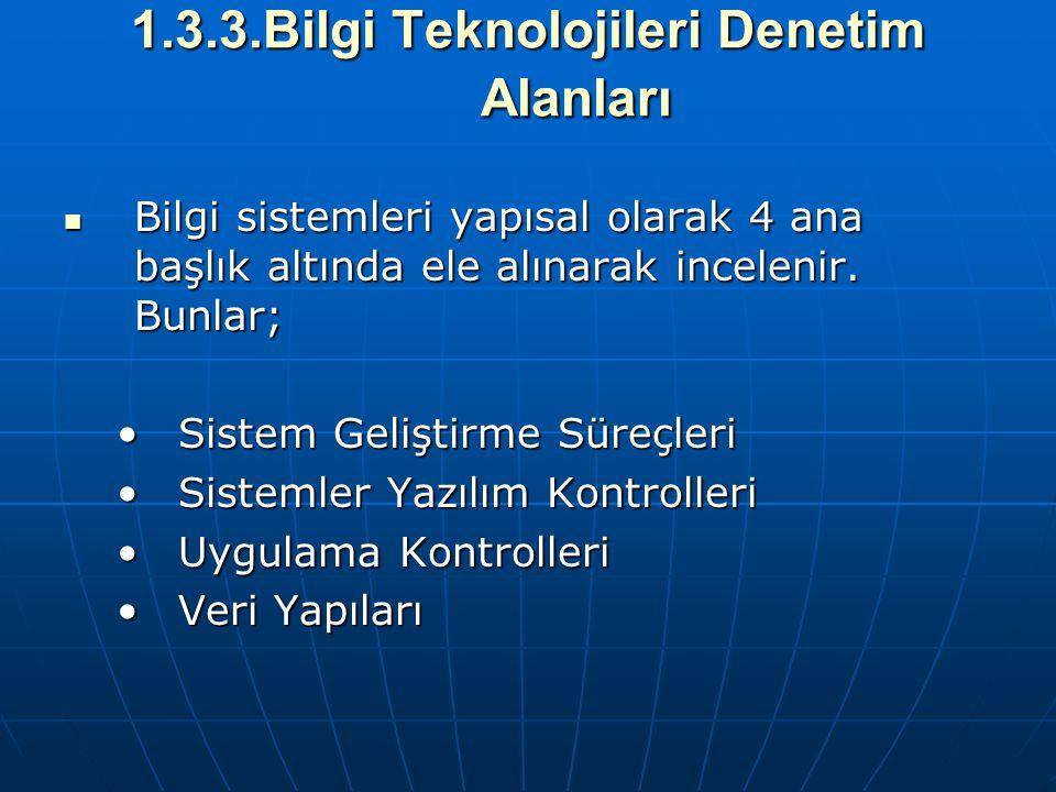 1.3.3.Bilgi Teknolojileri Denetim Alanları