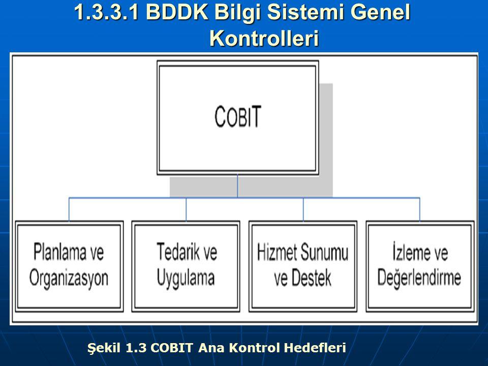 1.3.3.1 BDDK Bilgi Sistemi Genel Kontrolleri