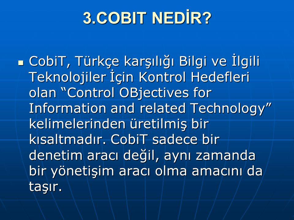 3.COBIT NEDİR