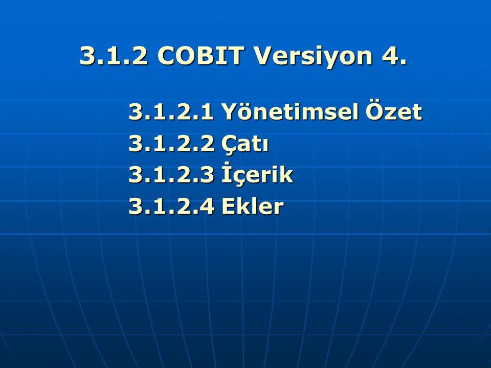 3.1.2 COBIT Versiyon 4. 3.1.2.1 Yönetimsel Özet 3.1.2.2 Çatı